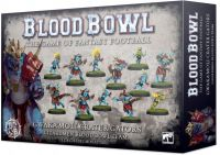 Photo de Blood Bowl - Team Hommes Lezards : Gwaka'moli Crater Gators